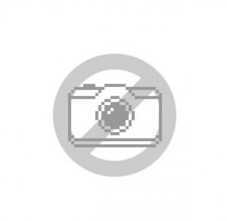 Iris dunkelblau (lat. Iris laevigata)